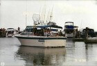 1988 Baha Cruisers 310 Sportfisherman - #1