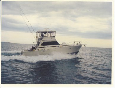 Viking 40, 40', for sale - $27,500