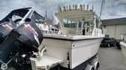 2008 Baha Cruisers GLE 251 WA - #1