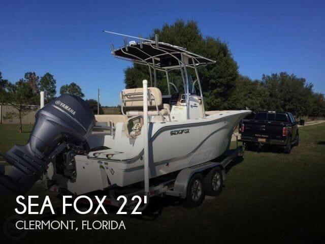 Beautiful New Sea Fox!
